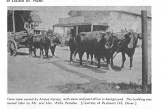 Team--of-Oxen---store-and-post-office